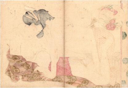 THE TRUTH OF A LADY OF PLEASURE (Yanagawa Shigenobu)