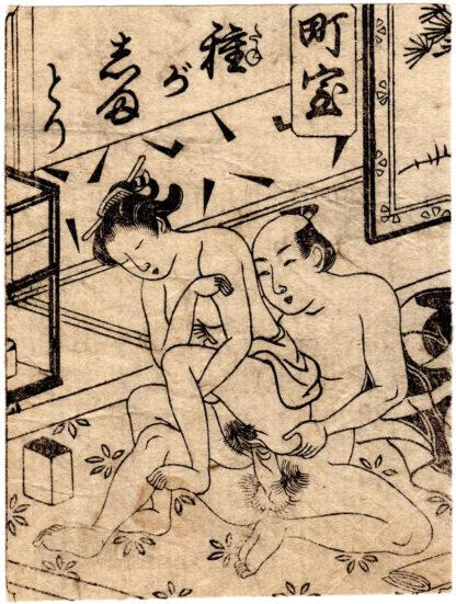 CITY WIFE: MUSKET (Tsukioka Settei)