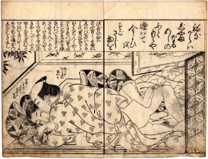 WHILE SLEEPING (Tsukioka Settei)