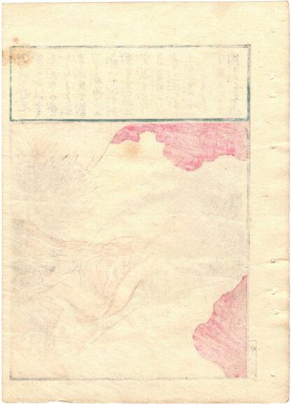 OCTOPUSLIKE VAGINA (Keisai Eisen)