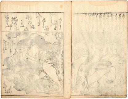 MY PRIVATE PARTS (Tsukioka Settei)