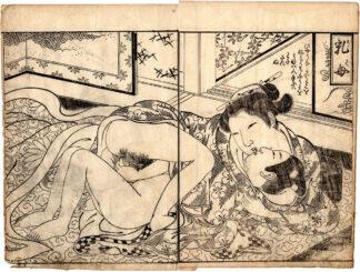 THE WETNURSE (Tsukioka Settei)