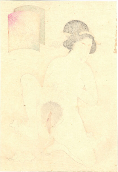 VAGINA WITH A LARGE CLITORIS (Takeuchi Keishu)