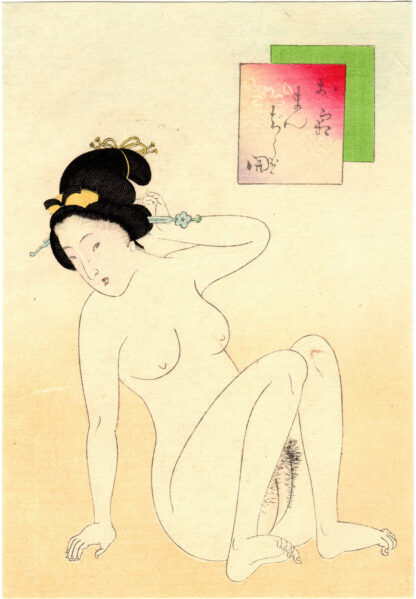MANJU-SHAPED VAGINA (Takeuchi Keishu)