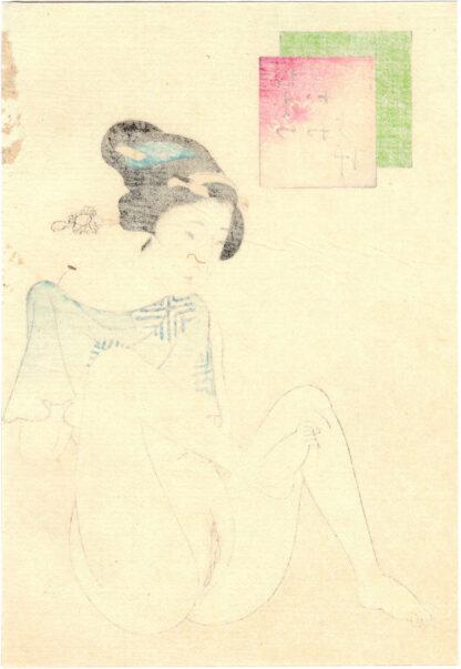 HAIRLESS VAGINA (Takeuchi Keishu)