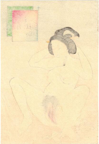 HAIRY VAGINA (Takeuchi Keishu)