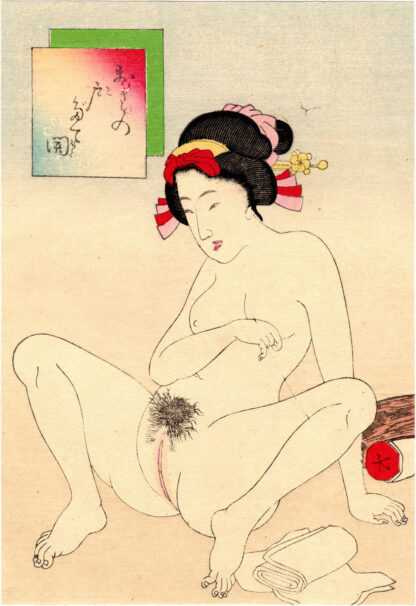 TRAPDOOR VAGINA (Takeuchi Keishu)