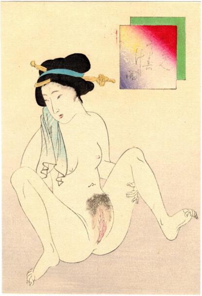 VAGINA WITH SPARSE HAIR (Takeuchi Keishu)