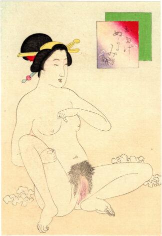 WET VAGINA (Takeuchi Keishu)