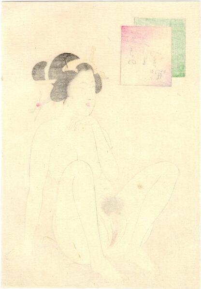 VAGINA AT THE TOP (Takeuchi Keishu)