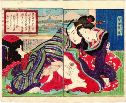 EIGHT AMOROUS VIEWS OF OMI: DESCENDING GEESE AT KATATA (Koikawa Shozan)