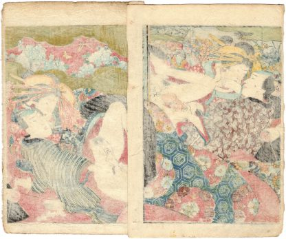 A MIRROR OF LUSTFUL FLOWERS: COURTESANS AND CLIENTS (Koikawa Shozan)